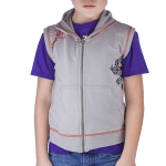 Ed Hardy Toddler Tiger Sleeveless Hoodie - Grey